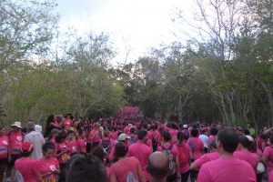 Illustration : Odyssea : 17 000 coureurs en rose