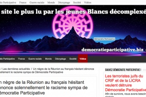 "Illustration : Le site ""Démocratie participative"", traite Jean-Mathieu Taristas de ""nègre de La Réunion"""