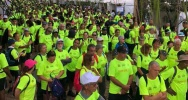 Illustration : Journée de la santé endométriose le tampon