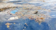 Illustration : pollution en mer