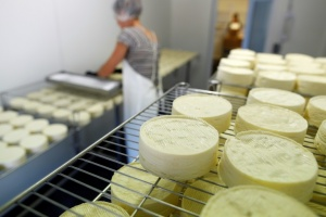 Illustration : Camembert de Normandie: in extremis, les producteurs refusent l'AOP aux industriels